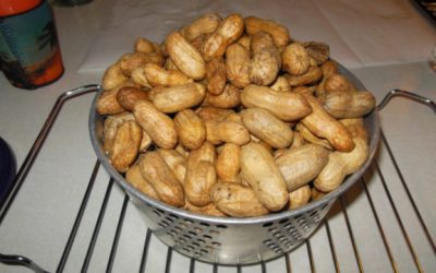 Boiled Peanuts South Carolina's Official Snack